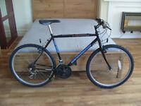 Townsend Adult Mountain Bike