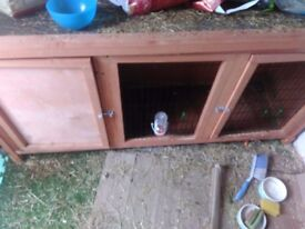5ft rabbit hutch with accessories