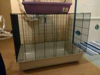 Rat cages and accessories