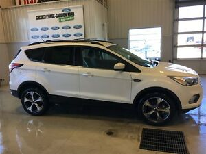 2017 Ford Escape SE 2X4