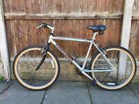 Ventura Mountain Bike
