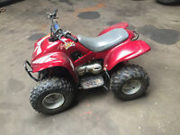 apache 100cc two stroke medium sized quad bike atv great fun good engine tyres plastics are tired
