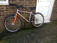Silver Magna mountain bike
