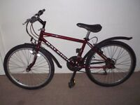 """Kids/small adult Raleigh Mountain Bike (24"""" tyres, 14.5"""" frame) (will deliver)"""