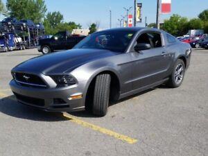 2014 Ford Mustang V6 6 spd Recaro 17k kms Coupe Sterling Grey