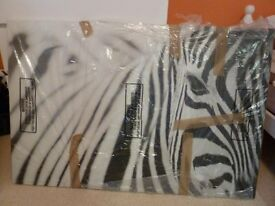 Zebra wall canvas