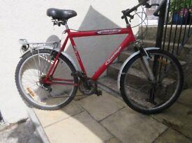 Shimano 15 Savage mountain bike