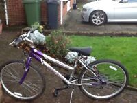 Girls/ ladies Extreme bike with accessories free local delivery if required