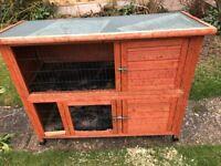 Rabbit/ guniea double hutch