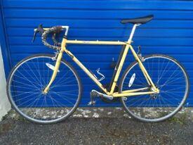Racing bike early 90's - Raleigh REdUcEd