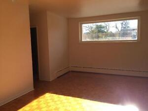 SPACIOUS 2 BED IN SECURE BUILDING! CARPET FREE! 3- 677 Victoria Kingston Kingston Area image 7