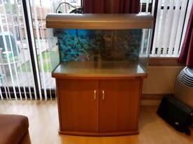 Aqua 1 fish tank 180 litres
