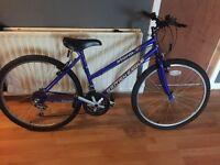 Cycle bike (britsh eagle)