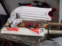 CRICKET SET IN KIT BAG SET OF PADS , GLOVES TWO BALLS & TWO BATS A HAND MADE NEWBERY WORTH £360