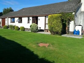4 bedroom house available to rent in Tain (individual rooms also available)
