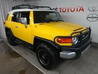 2009 Toyota FJ Cruiser Off-Road Package