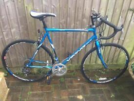 Viking blue bike