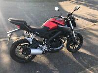 Yamaha MT-125 ABS, great learner.