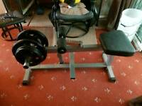 Seated calf raise with 40kgs of Olympic weights