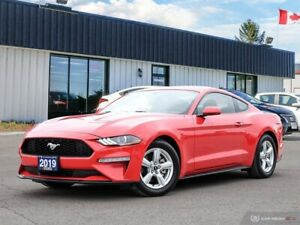 2019 Ford Mustang Car has only 280 kms!! Like new!