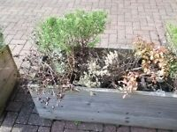 Garden planters 120 x 47cm for sale