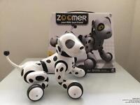 Zoomer Zuppie