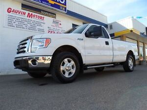 2011 Ford F-150 XLT LOADED ECOBOOST!