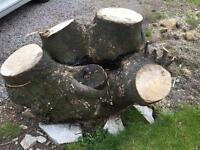 Big Log free to uplift