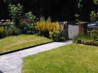 1 Lovely single room to rent in a 4 bedroom house with 3 other chilled out people