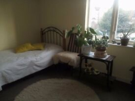 Spacious double room for rent in town centre, £550 bills incl.