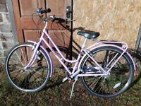 Small adult lilac bike
