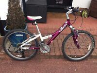 "Trek MT220 24"" mountain bike child's girls kids bicycle (£50 just spent)"