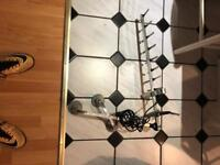 Satellite dish with suction cups