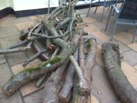 Dry logs quick collection from Hockley