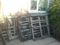 whole and broken pallets