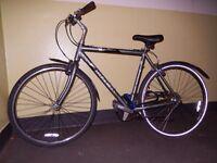 Trek T30 bike