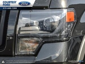 2013 Ford F-150 FX4 London Ontario image 9