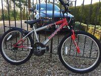 Falcon Mission boys mountain bike