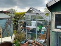 8' x 6' Greenhouse with louvre rear vent and 2 x automatically opening roof vents