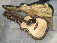 Maton EBG808 Acoustic Guitar BRAND NEW