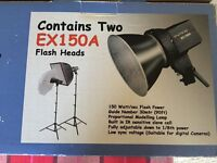 Interfit Home flash kit with 2 Power Flash MD400 units