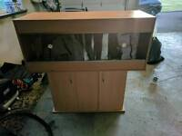 4ft Vivarium and cabinet
