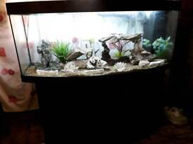 5 FT JEWEL VISION BOWFRONT BOWFRONT FISHTANK IN BLACK IN GOOD CONDITION