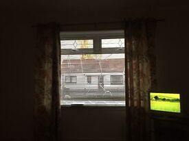 1 bed flat in Alloa centre for rent