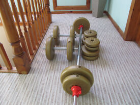 Dumbell and Barbell with 16 x weights . Excercise bench