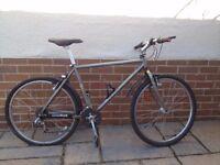 Specialized Rockhopper 19inch Frame 26 inch wheel Retro bike