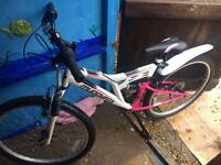 Lady's mountain bike