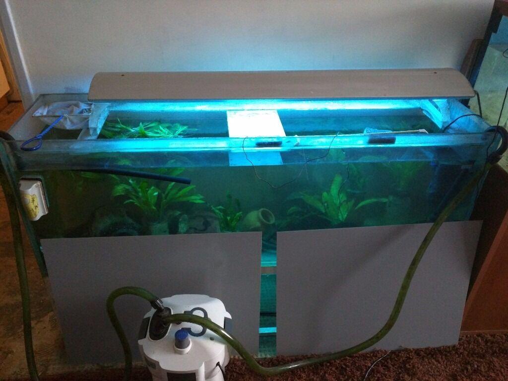 Fish tank external filter - 5ft Fish Tank External Filter Lights