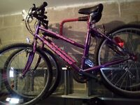 2 Girls Mountain Bikes - Falcon Mont Blanc - Shimano Gears