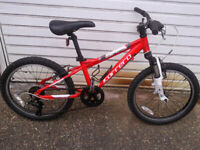 BMX BOY OR GIRLS CARRERA BLAST 20 in wheels 7speed all ali £75